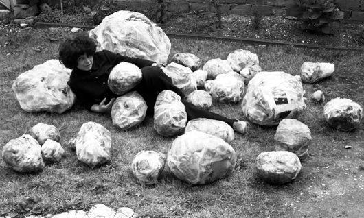 Alina Szapocznikow, Invasion of Tumours, 1970